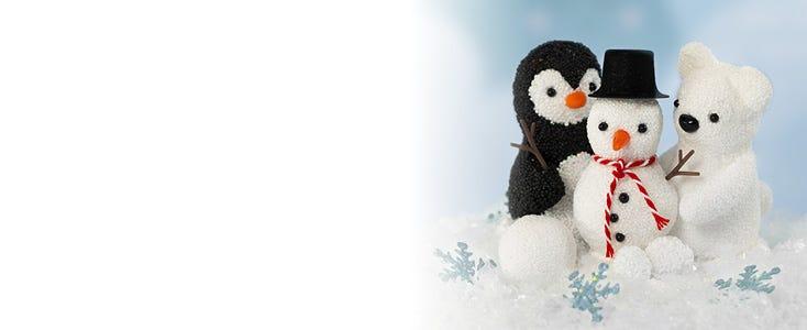 Polarvärlden för hela familjen