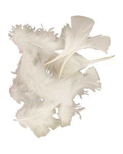 Dun, stl. 7-8 cm, vit, 50 g/ 1 förp.