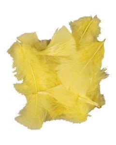 Dun, stl. 7-8 cm, gul, 50 g/ 1 förp.