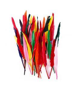 Fjädrar, L: 29-31 cm, mixade färger, 100 st./ 1 förp.