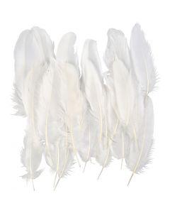 Fjädrar, vit, 350 st./ 1 förp.