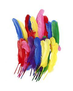 Indianfjädrar, L: 20 cm, mixade färger, 36 st./ 1 förp.