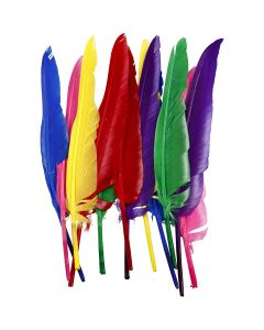 Indianfjädrar, L: 27 cm, mixade färger, 12 st./ 1 förp.
