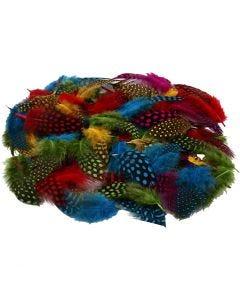 Pärlhönsfjädrar, mixade färger, 50 g/ 1 förp.