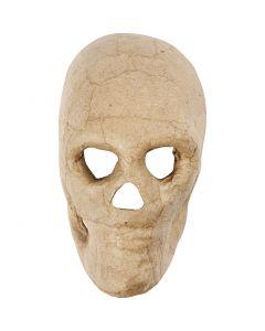 Kranium, H: 13 cm, 1 st.
