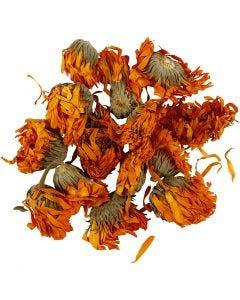 Torkade blommor, Ringblomma, Dia. 1 - 1,5 cm, gyllen, 1 förp.
