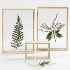 Torkade blad i dubbelramar