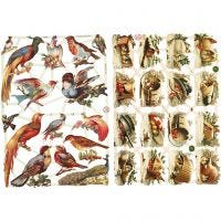 Bokmärken, fåglar, 16,5x23,5 cm, 2 ark/ 1 förp.