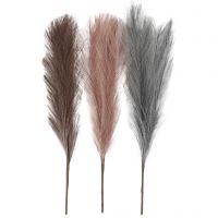 Pampasgräs, L: 50 cm, dusty blue, frostad lila, gml. rosa, 3 st./ 1 bunt