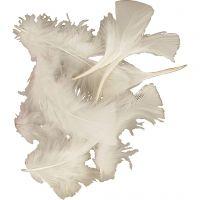 Dun, stl. 7-8 cm, vit, 500 g/ 1 förp.