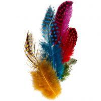 Pärlhönsfjädrar, mixade färger, 3 g/ 1 förp.