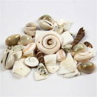 Strandsnäckor, stl. 9-40 mm, Hålstl. 1-1,5 mm, 120 g/ 1 förp.