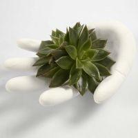 Hand gjuten med gips i en engångshandske